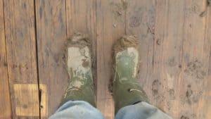 Holz Fussboden Pflege bei Dreck Staub und Nässe